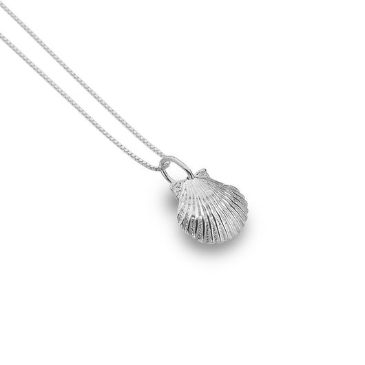 Photo of Baby scallop shell pendant