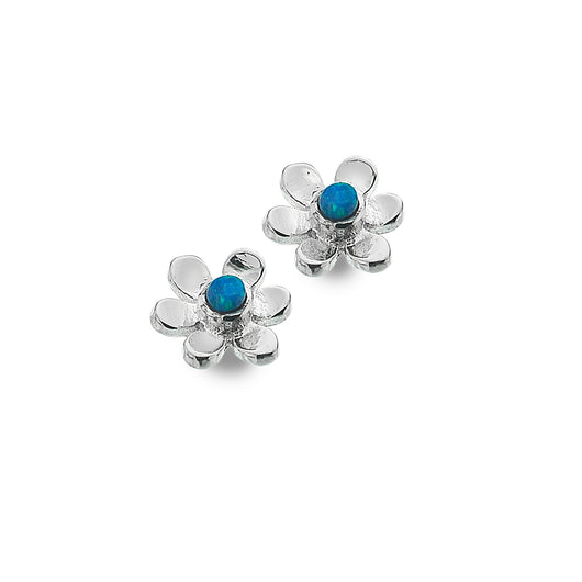 Photo of Tiny blue daisy studs