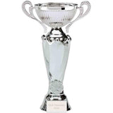 632 - Tower Turin Silver Presentation Cup