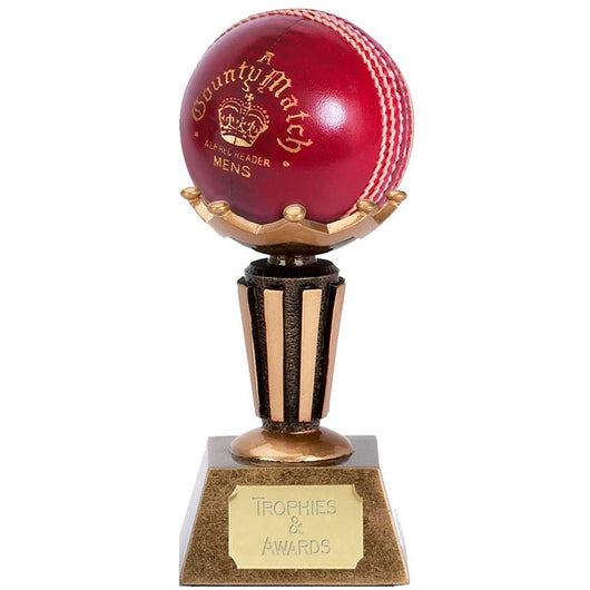 A1005 - Ball Display Cricket Trophy
