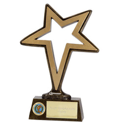 Pinnacle Star Multi Achievement Awards Trophy