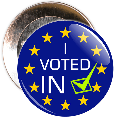 I Voted In European Badge