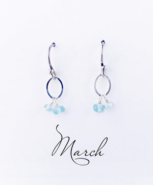 Load image into Gallery viewer, March Silver Birthstone Earrings