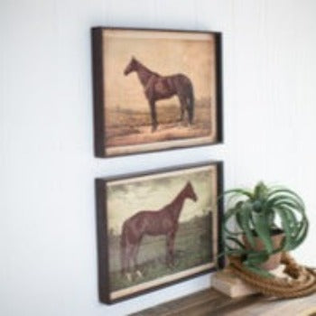 Horse Prints Under Glass