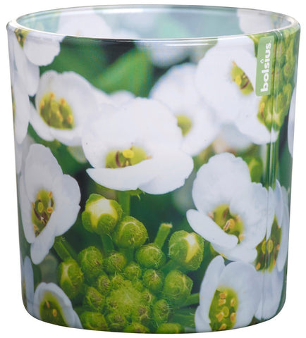 Bolsius Seasonal Scury Grass Glassware Candle