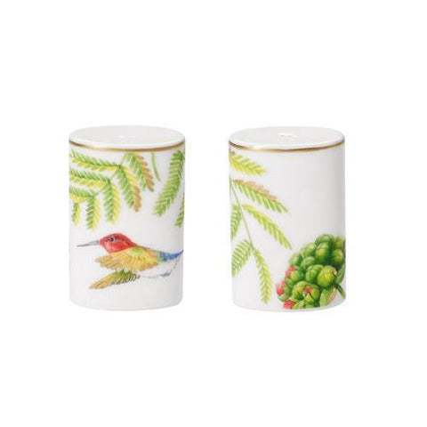 Villeroy and Boch Amazonia Anmut Salt and Pepper