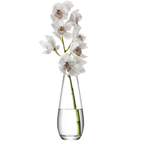 LSA Flower  Clear Tall Stem Vase 29cm