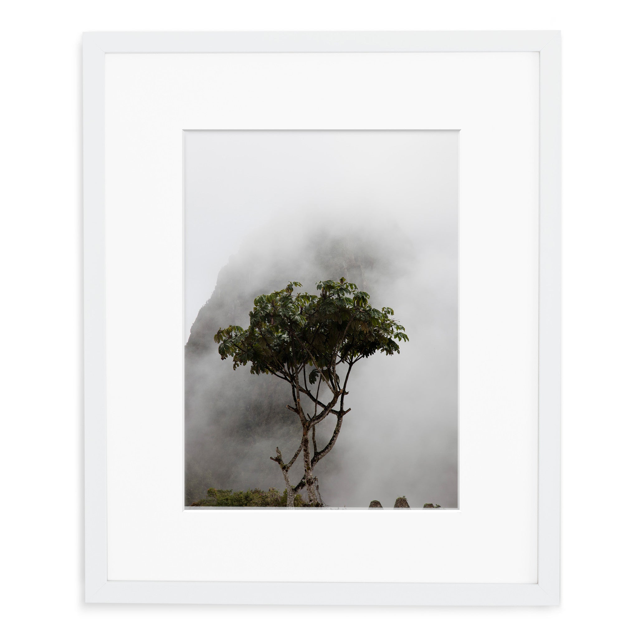 Jessie Chaney Prints - Fog Rise
