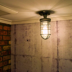 ceiling mounted industrial cage light