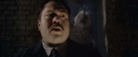 Fantastic Beasts: The Crimes of Grindelwald Jacob's back
