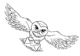 harry potter owl