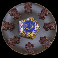 harry potter chocolate frogs mold lifestyle picture