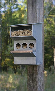 Wild Bird Feeder Metal Hanging