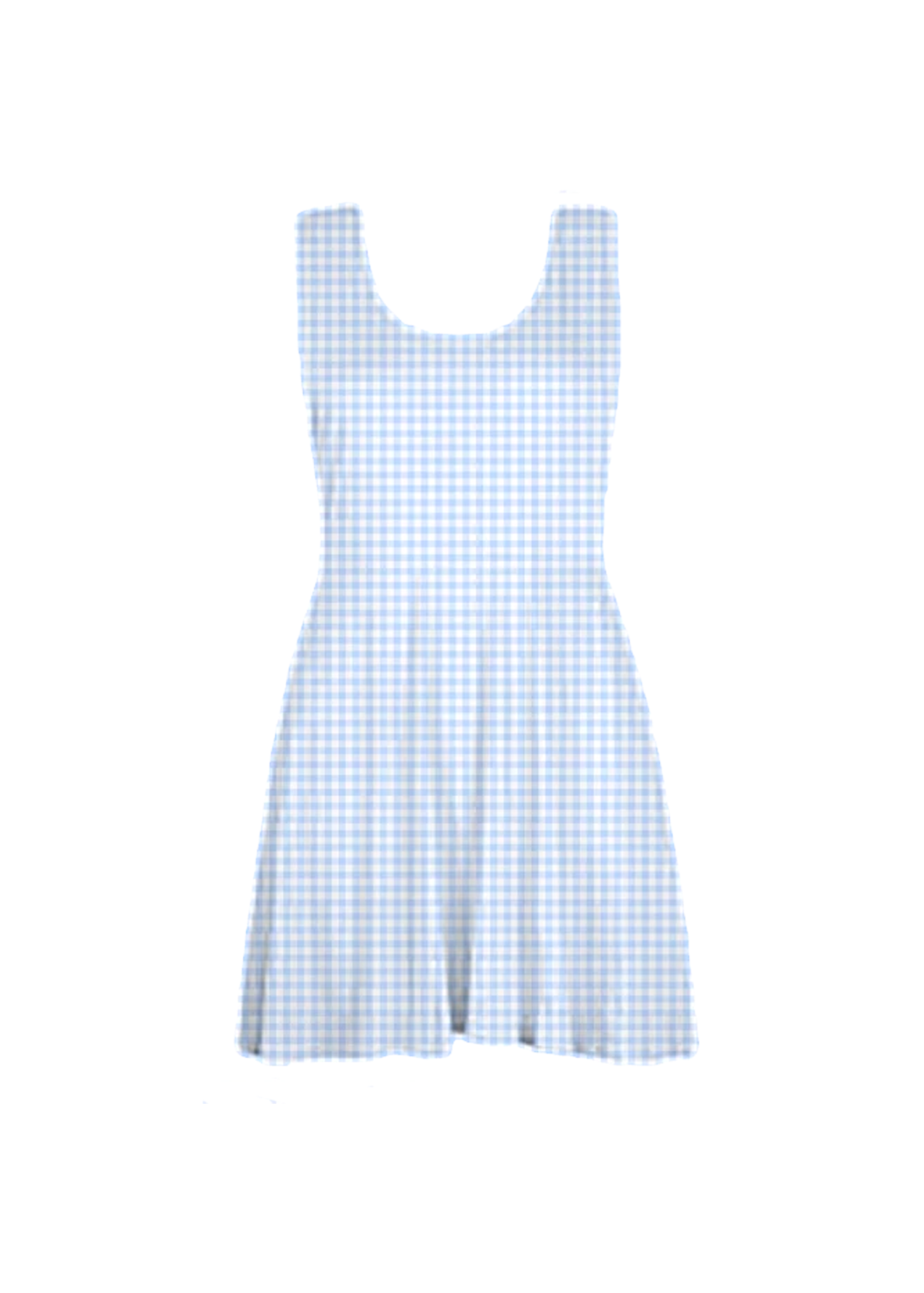blue gingham skater dress