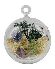 Bliss Gardens Air Plant Terrarium Kit  / Purple Amethyst Crystal / Shabby Country Chic - Bliss Gardens