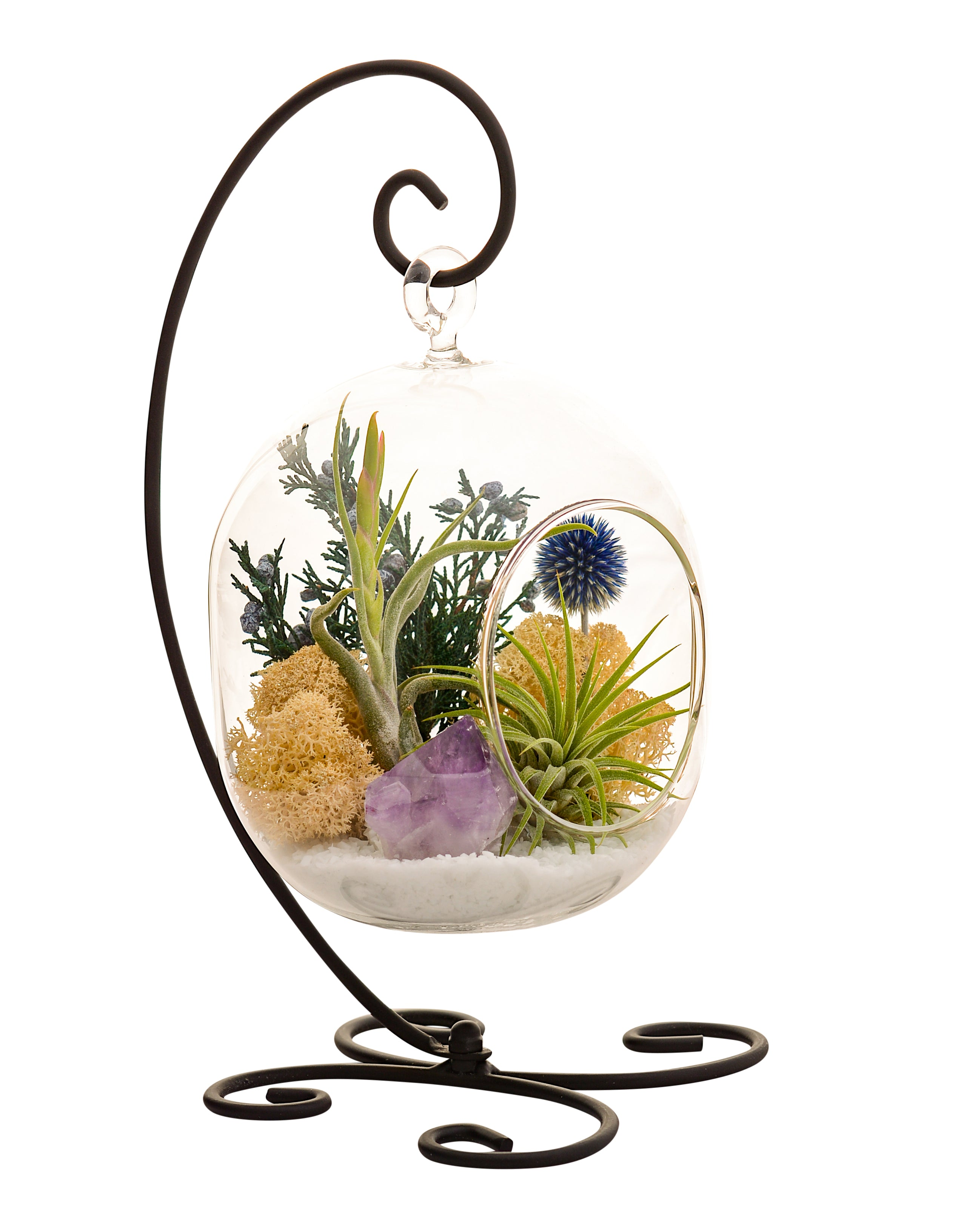 Air Plant Terrarium Stand With Purple Amethyst Crystal 6 Oval Glass Bliss Gardens