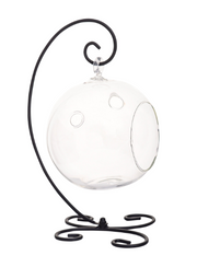 "Bliss Gardens 5"" Round Glass with Elegant Black Metal Stand / DIY Terrarium Kit - Bliss Gardens"
