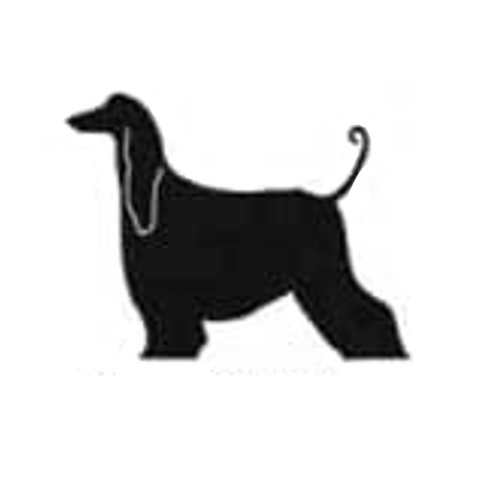 Afghan hound  - High Quality Stencil 10 mil -  Reusable Patterns