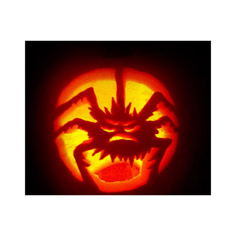 Spider Pumpkin - 10 Mil Clear Mylar  - Reusable Stencil Pattern
