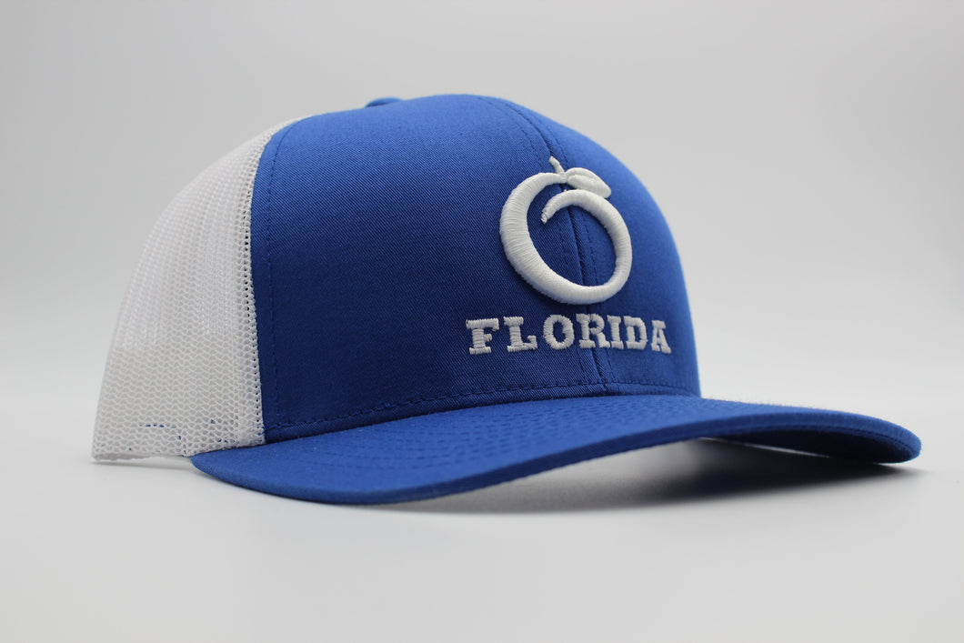 Blue Ridge Trucker Hat