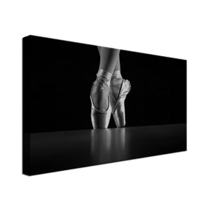 Magical Ballet Dance Single Canvas