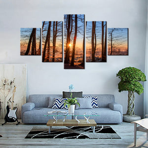 Sunrise through the forest - 5 Pcs Canvas Set