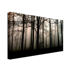 Dark Valley Single Canvas