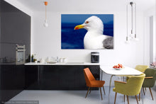 Seagull Single Canvas