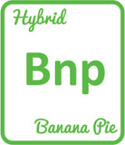 Buy Cannabis Terpene Profile Banana Pie