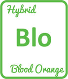 Buy Cannabis Terpene Profile Blood Orange