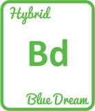Buy Cannabis Terpene Profile Blue Dream