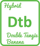 Buy Cannabis Terpene Profile Double Tangie Banana