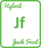 Buy Cannabis Terpene Profile Jack Frost
