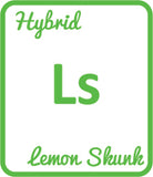 Buy Cannabis Terpene Profile Lemon Skunk