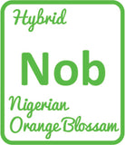 Buy Cannabis Terpene Profile Nigerian Orange Blossom