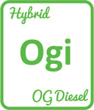 Buy Cannabis Terpene Profile OG Diesel