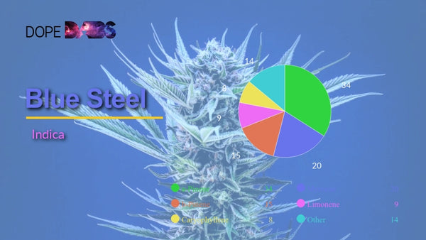 Certificate of Analysis of Blue Steel #1 Cannabis Terpene Profile