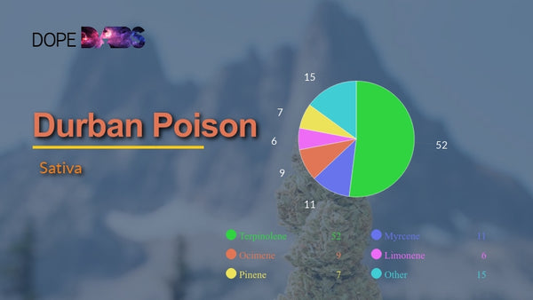Certificate of Analysis of Durban Poison Cannabis Terpene Profile
