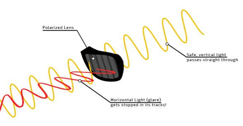 Graphic of polarized lens showing how horizontal light waves are filtered out and vertical light waves are let through