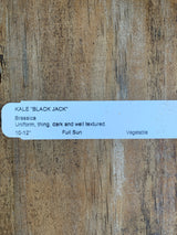 Black Jack Kale 4-pack