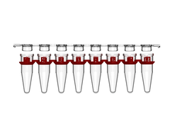 .2ml PCR 8 Strip with Polypropylene Flat Caps