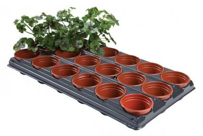 Growing Tray 18 Round Pots