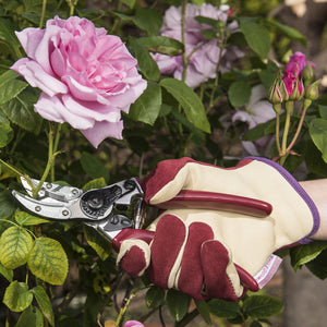 Kent and Stowe Anvil Secateurs