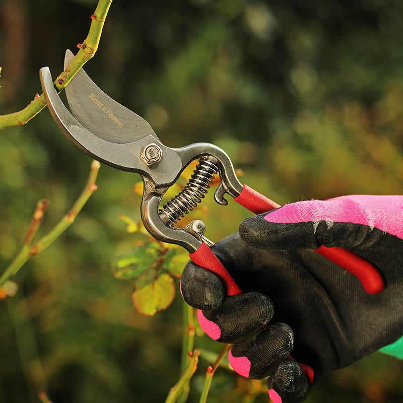 Kent and Stowe Bypass Secateurs