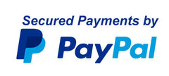 Secured Payments by PayPal