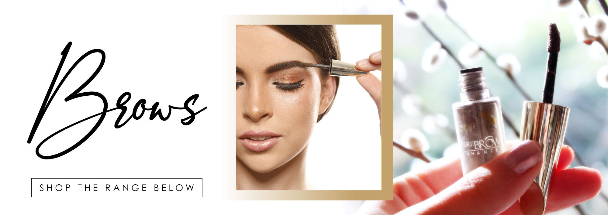 Silk Oil Of Morocco Brow products
