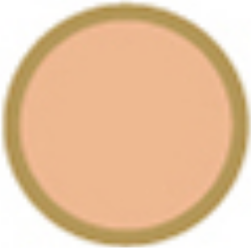 catlinageo Foundation Medium Rose Catalina Geo Skin Cover 13g