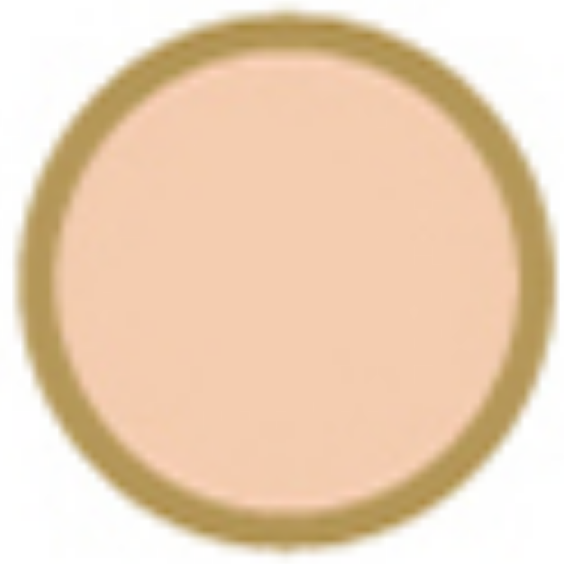 catlinageo Mineral Make Up 11 - Pink Beige Catalina Geo B.I Colour Sensor Two Way Cake