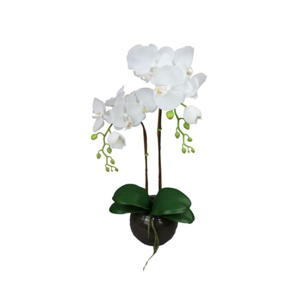 Hamptons Home Real Touch Phalaenopsis Orchids in Glass Bowl 60 cm