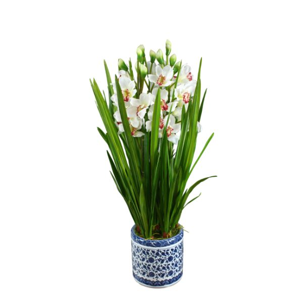 Hamptons Home Real Touch Phalaenopsis Cymb Orchids in Dynasty Pot 87 cm